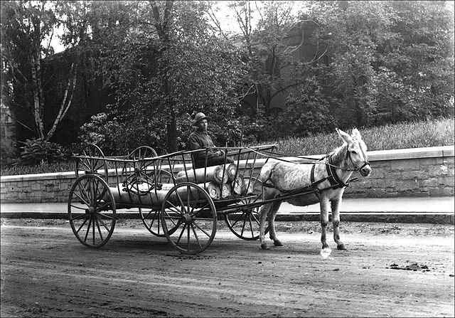 File:Transporting logs by mule-drawn cart -- Keene, NH ...