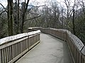 Tree-top boardwalk, at Stover Country Park - geograph.org.uk - 1254650.jpg