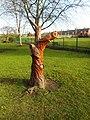 Tree Stump carving, Valley Gardens, Pontefract (geograph 5286010).jpg