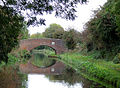 Trent and Mersey Canal near Barton-under-Needwood, Staffordshire - geograph.org.uk - 1580510.jpg