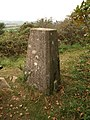 Trig point, Beacon Hill - geograph.org.uk - 1553193.jpg