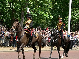 King's Troop, Royal Horse Artillery - Image: Trooping the Colour 2006 P1110091 (169157842)