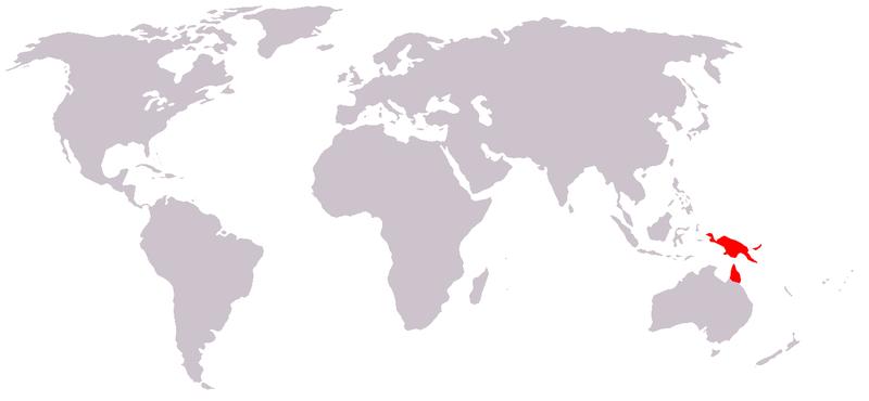 Hábitat-del-cuscús-moteado