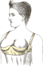 Patent for Marie Tucek's underwire bra