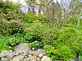 University of Copenhagen Botanical Garden - DSC07523.JPG
