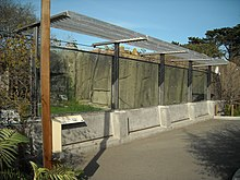 Edinburgh Zoo Big Cats Closing