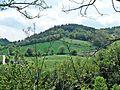 Urbino-paesaggio presso Urbino 4.jpg