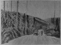 V.M. Doroshevich-Sakhalin. Part I. Nature of Sakhalin. Cutting in Taiga.png