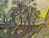Van Gogh - Garten des Hospitals Saint-Paul3.jpeg