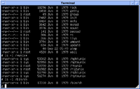 Version 7 UNIX SIMH PDP11 Kernels Shell.png