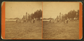 View of a group of people standing with a canon, with trees in the background, from Robert N. Dennis collection of stereoscopic views.png