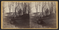 View of the stream running through the park and flowing into the creek Newport N. Y, from Robert N. Dennis collection of stereoscopic views.png