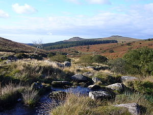 Dartmoor - View down the River Meavy towards Sharpitor and Leather Tor
