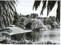 Virginia Lake (1962).jpg