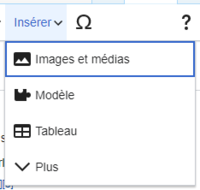 VisualEditor Media Insert Menu-fr.png