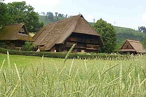 Black Forest house - The farm of Vogtsbauernhof in the eponymous open-air museum