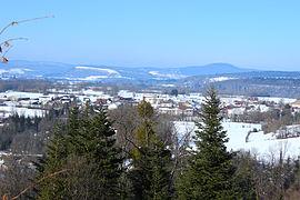 Cogna Wikipedia