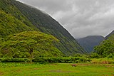 View of Waipio Valley.