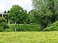 Waldfriedhof Neuer Teil GO-8.jpg