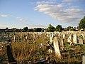 Walthamstow Cemetery - geograph.org.uk - 1463125.jpg