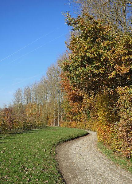 Wandelweg Tielt-Winge