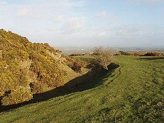Warbstow Bury