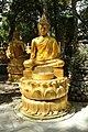 Wat Thammapathip à Moissy-Cramayel le 20 août 2017 - 20.jpg
