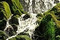 Waterfall, Crawfordsburn Glen (6) - geograph.org.uk - 784991.jpg