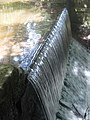 Waterfall at Markeaton Park, Derby - geograph.org.uk - 1652963.jpg