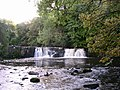 Waterfall in Linn Park - geograph.org.uk - 984561.jpg