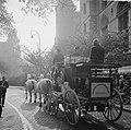 Wereld Dierendag 1964 , de postkoets, Bestanddeelnr 916-9727.jpg