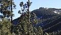 Wild Landscape (141746531).jpeg