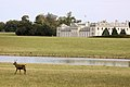 Woburn Abbey Deer Park - October 2009 (4019930503).jpg
