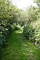 Woods Mill, Sussex Wildlife Trust, England - grass footpath.jpg