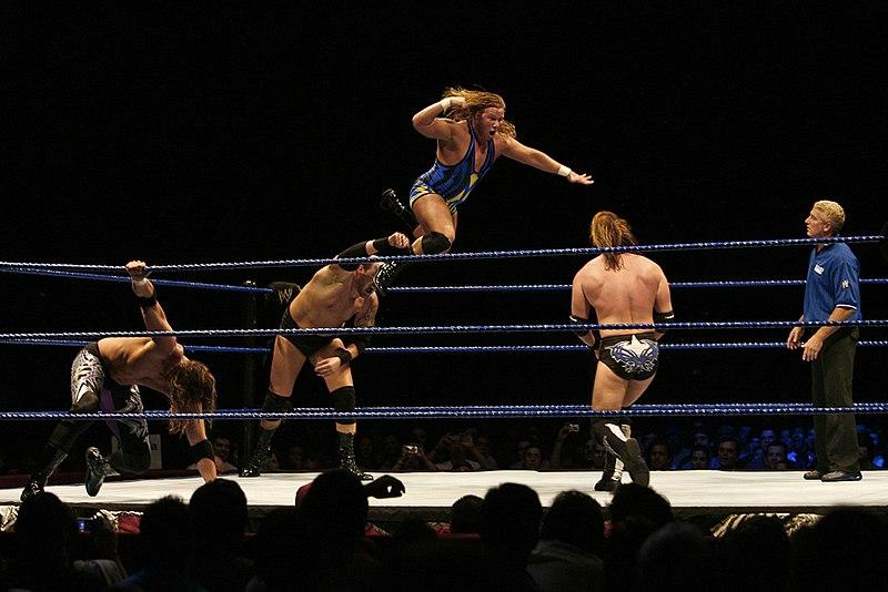 Bildresultat för wrestling