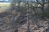 Wuppertal Metzmachersrath 2015 026.jpg