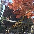 Yamanouchi, Kamakura, Kanagawa Prefecture 247-0062, Japan - panoramio (3).jpg