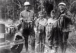 Angling in Yellowstone National Park - Typical Yellowstone fish catch (1923)