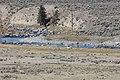 Yellowstone - panoramio (3).jpg