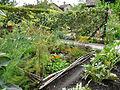 Yvoire-Jardin des Cinq Sens (6).jpg