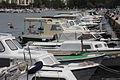 Zadar - Flickr - jns001 (20).jpg