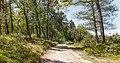 Zandpad door natuurgebied. Locatie, Kroondomein Het Loo 01.jpg
