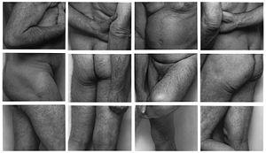 """John Coplans - Image: """"Frieze, No. 2, Four Panels, 1994"""" by John Coplans"""