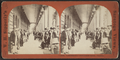 'Com. Vanderbilt Congress Hall Piazza.', by William H. Sipperly.png