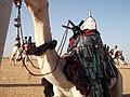 (الصحراء الكبرى (الجزائر-تمنغست.JPG