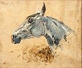 (Albi) Cheval blanc GAZELLE - Toulouse-Lautrec.jpg