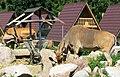 Ölands Djur & Nöjesparks-Zoo - panoramio.jpg