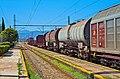 Στο σιδηροδρομικό σταθμό της Τιθορέας - panoramio (1).jpg
