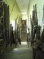 Ботанический сад РАН, музей, экспозиция на лестницах.jpg