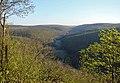 ДолинаЗбруча - panoramio.jpg